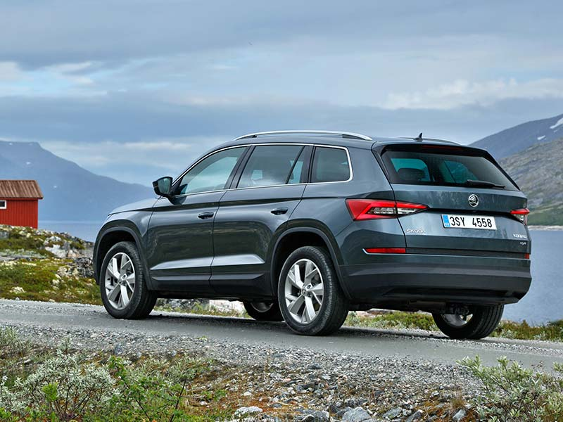 Kodiaq rear in grey